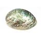 Boucle d'oreille en nacre abalone Grand cercle percé