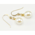 Earrings 18K Gold Plated Hook White Freshwater Pearl